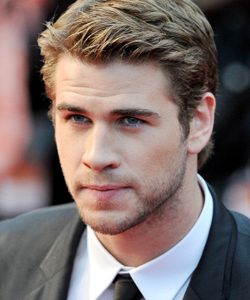 Liam Hemsworth profile