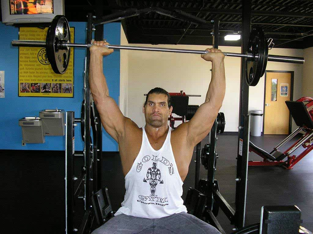The great khali 46532